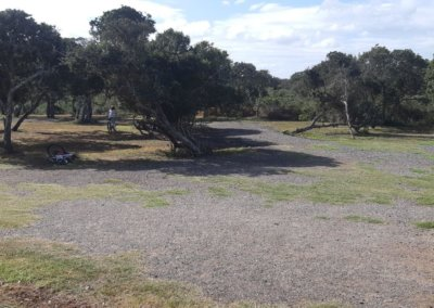 Bushwillow extended playground 1