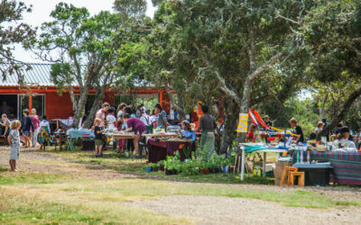 Spring Heritage Fair