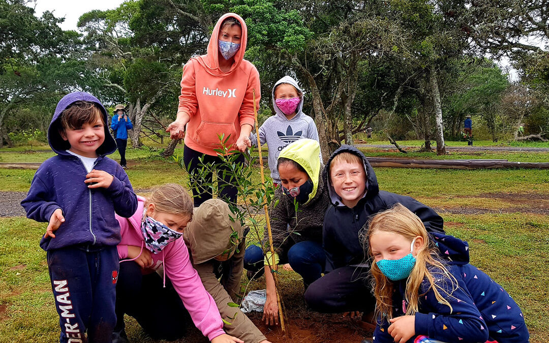 Food forest day